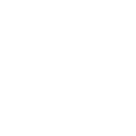 draw_icon